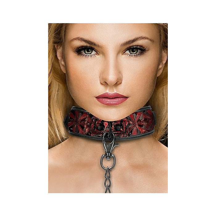 Luxury Collar with Leash - Burgundy